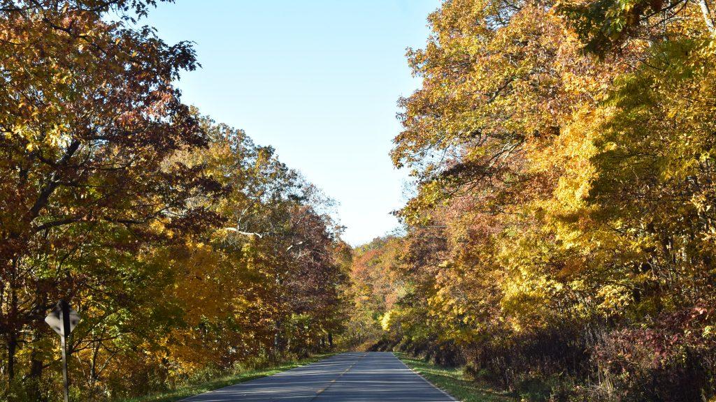 Unsere Fahrt durch den Shenandoah-Nationalpark